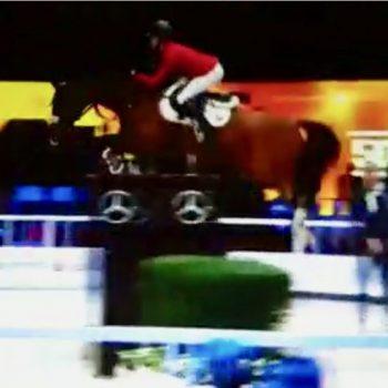 Super für den Pferdesport